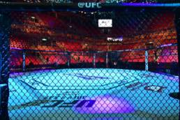 The UFC Without Fans Might be Better in 2020
